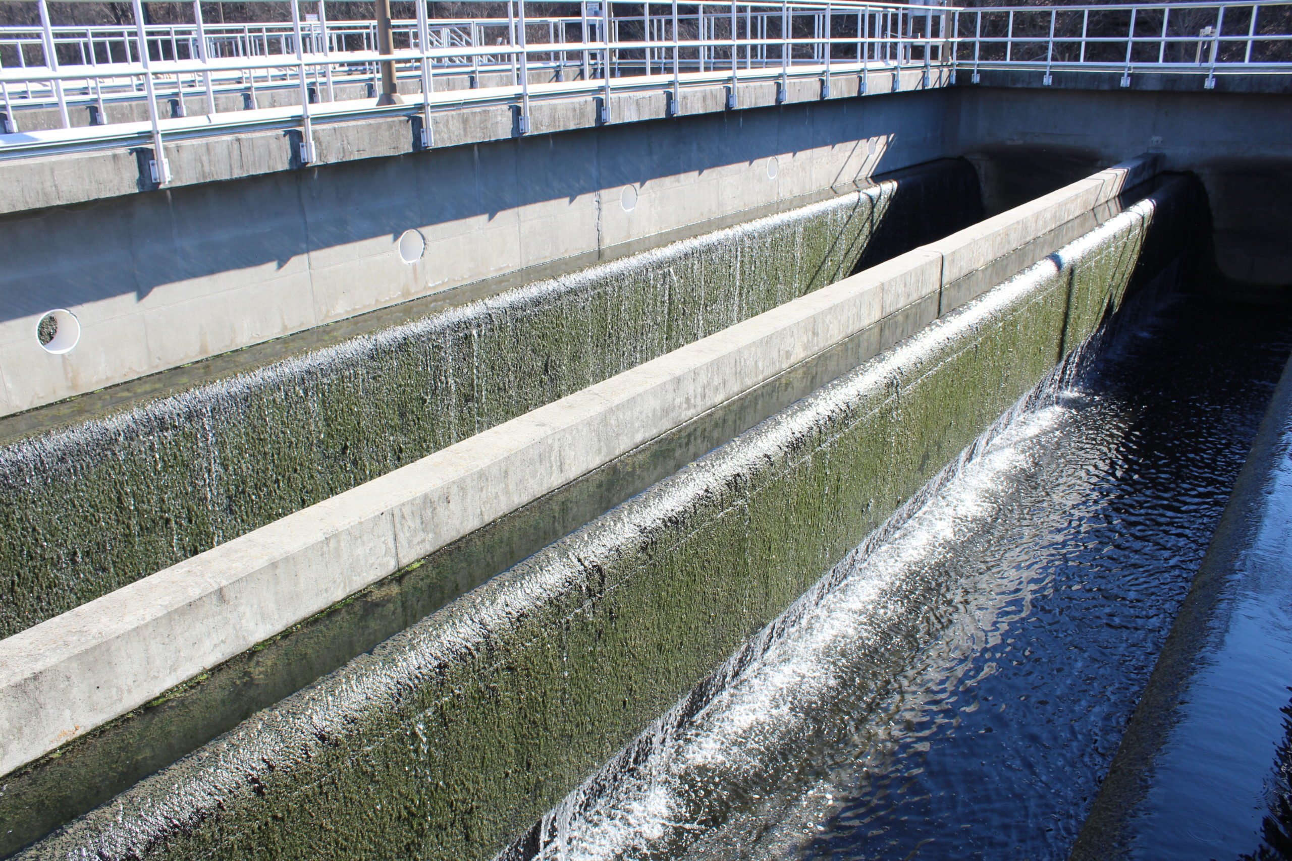 Filtration at Wastewater Treatment Plant
