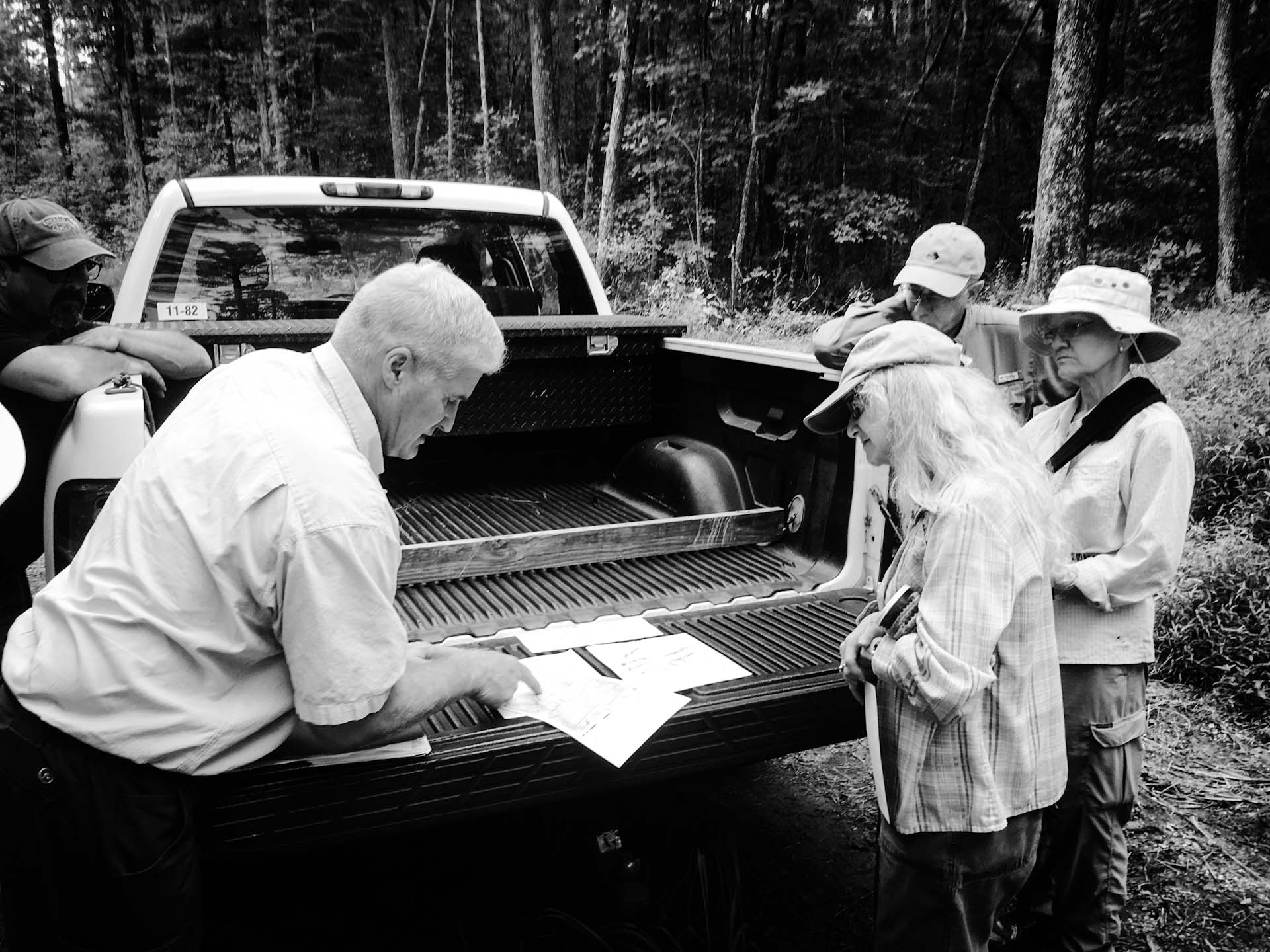 Reviewing Forest Plans